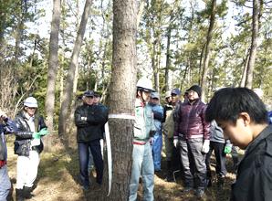 石川県 松枯れから美しい海岸林を守る